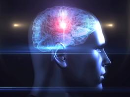 Brain-Hacking mit Machine Learning