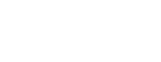 IT Bündnis BW
