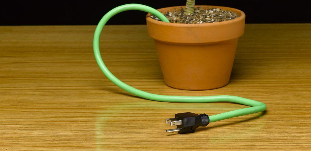Blumentopf mit Stromkabel