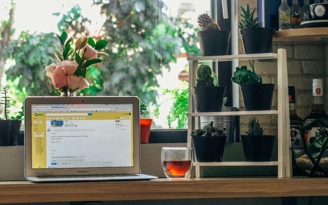 Kostenlose Online-Kurse: Webdesign, Big Data & Co.