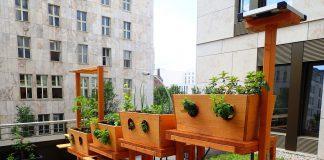 Geco Gardens bringt Vertical Farming nach Stuttgart