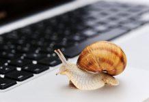langsames Internet, schleppender Breitbandausbau